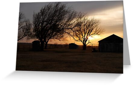 Kansas Sunset by Suz Garten