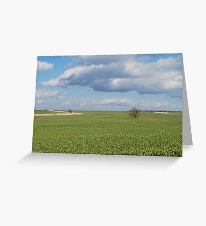 Big Sky and Kansas Wheat Greeting Card