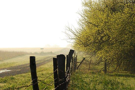 Misty Country Morning in Kansas by Suz Garten