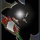 Solar Web by Chet  King