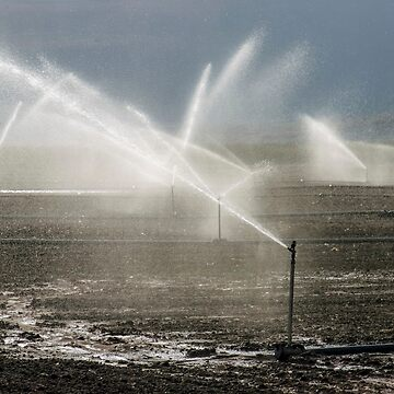 Israel, Jezreel Valley irrigation of agricultural fields by PhotoStock-Isra