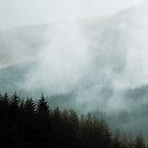 Winter mist in the valleys by Patrice Mestari