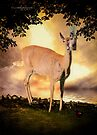 Summer's Dawn (White Tail Deer and Red Wing Black Bird) by Yannik Hay