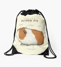Anatomy of a Guinea Pig Drawstring Bag
