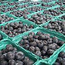 Blueberries by Jimmy Joe