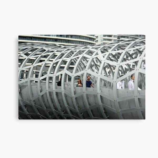 Framed in steel Metal Print