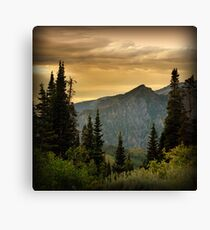 Looking Down from Timpanookie Road Canvas Print