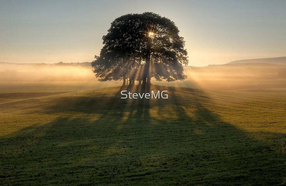 Rays Of Hope  by SteveMG