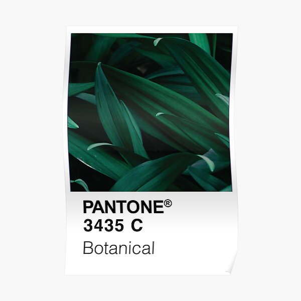 Color Swatch - Green Botanical Plant Poster