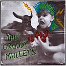 The Cruddy Mullets Album Cover by pictrola