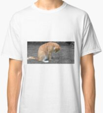 Paws for thought Classic T-Shirt
