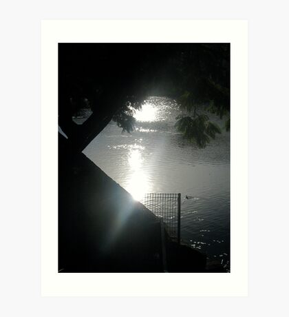 Original photo for Shrouded in Night Art Print