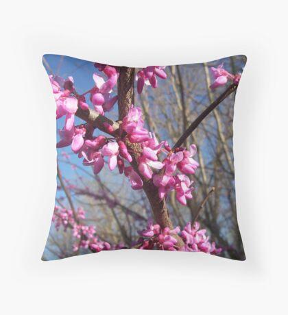 Kentucky Spring Beauty Throw Pillow