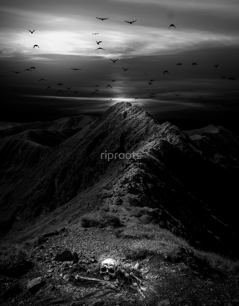 Skeleton Peak by riproots