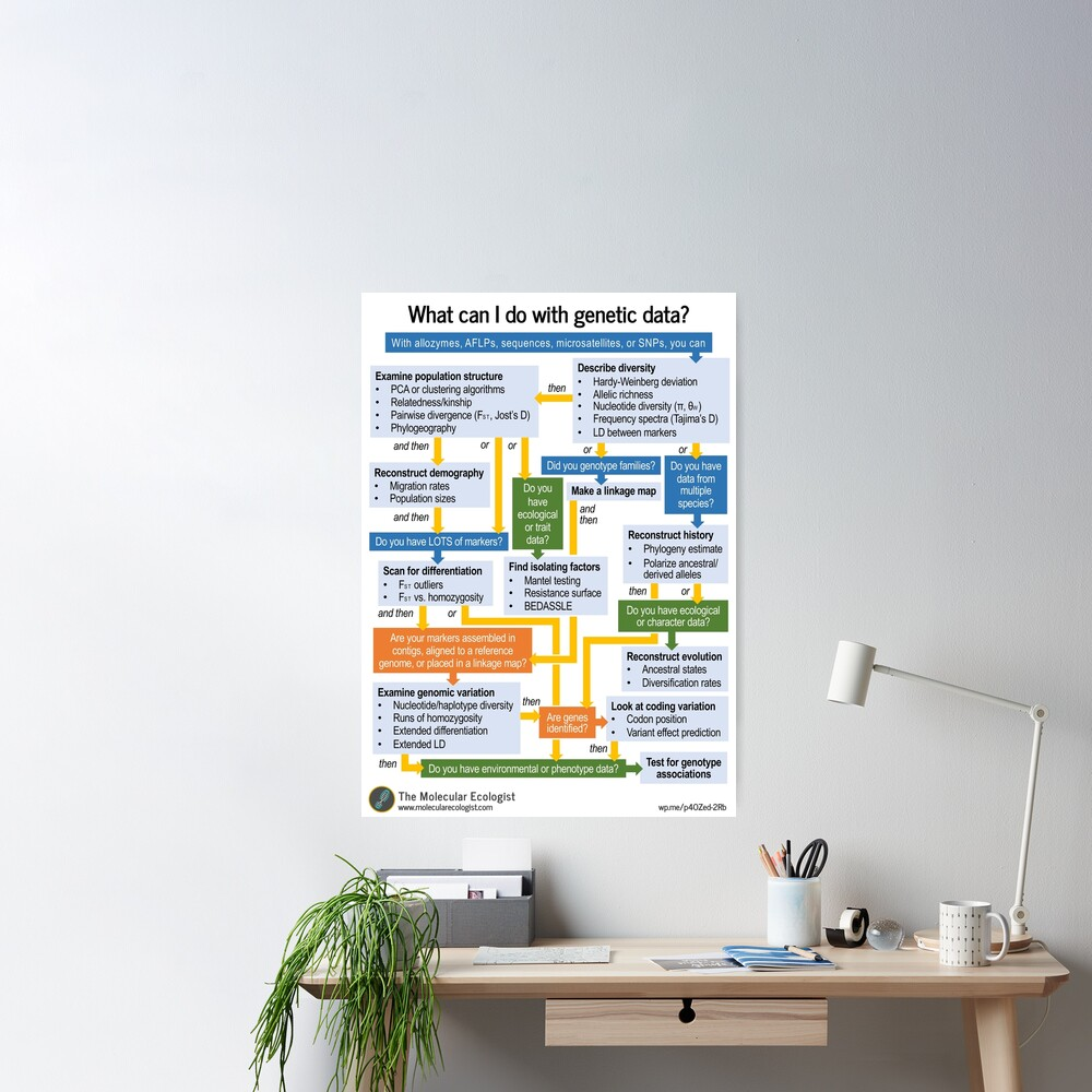 Molecular Ecology, the Flowchart Poster