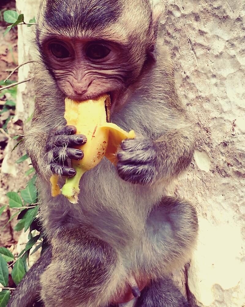 Banana Monkey  by nataly-h