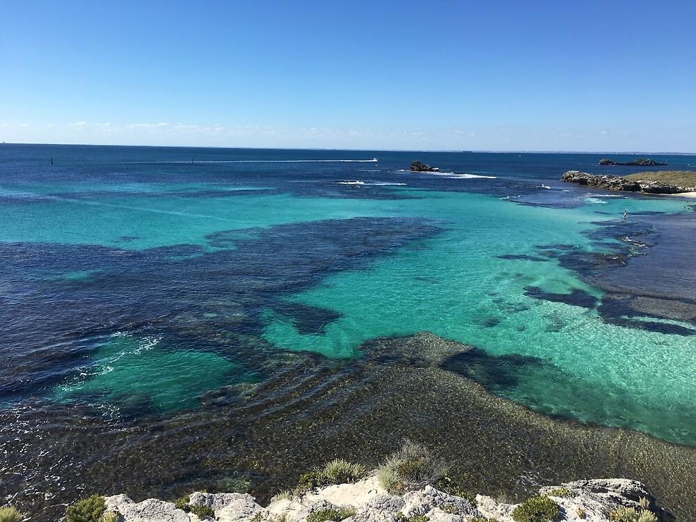 Ocean Reef  by nataly-h