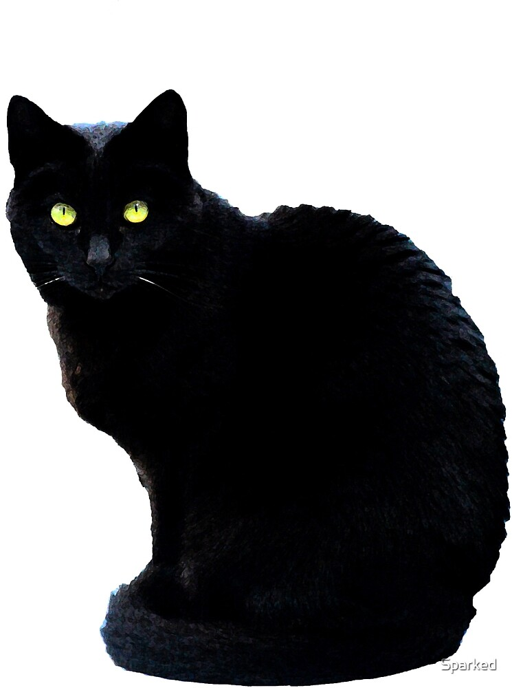 Black Cat Magic by Sparked