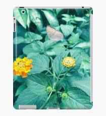 Perching Butterfly  iPad Case/Skin