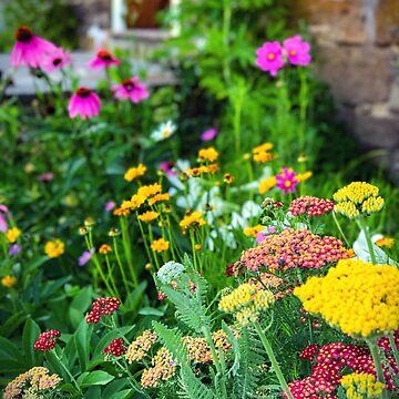 Country Garden by KENDALLMcKERNON