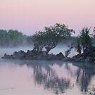 Neverland by Asoka