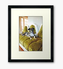Miss Tina Framed Print