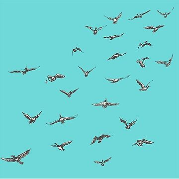 Flying Birds Teal Background Sticker by orylinapparel