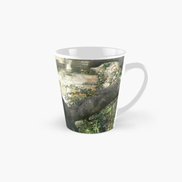 Bald Eagle birds 012 Tall Mug