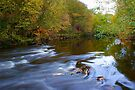 Autumn on the Calder by Andy Beattie