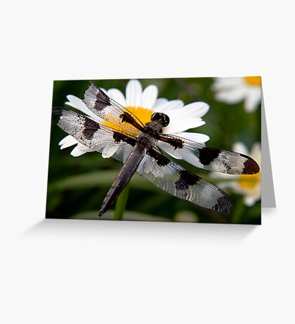 Restful Recovery Greeting Card