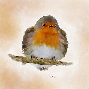 Bird: Fluffed Robin by bamalam-art