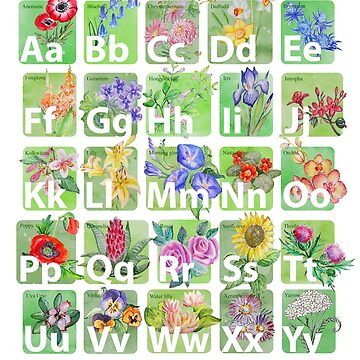 Flower Alphabet by Redilion