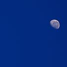 A Morning Moon in the July Sky.. by Larry Llewellyn