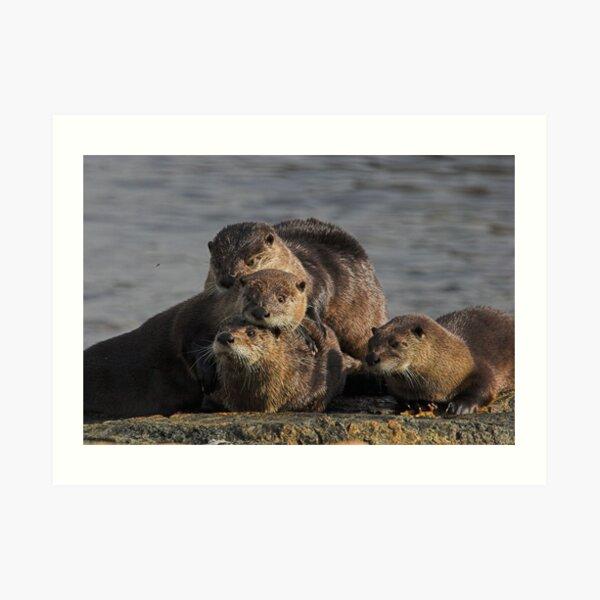 Whole Otter Love Art Print