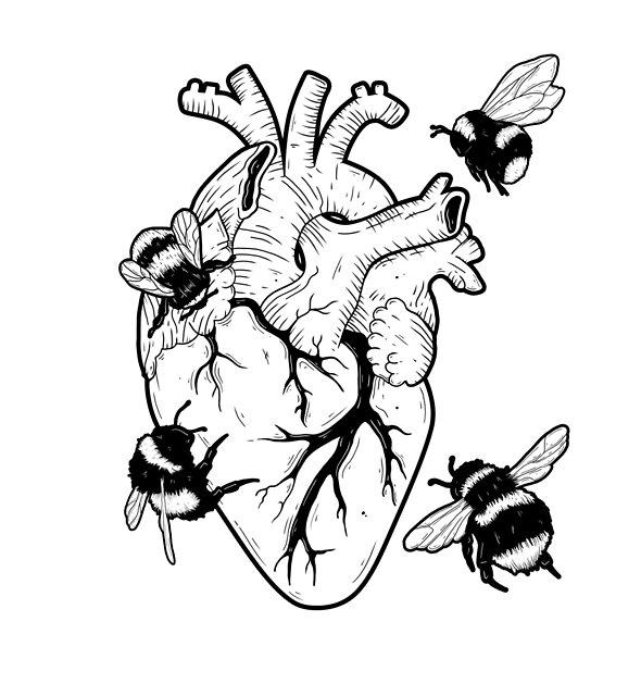 Save The Bees by Natasha Sines