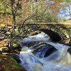 Gleason Falls in Autumn by Monica M. Scanlan