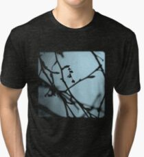 Winter Blues - TTV Tri-blend T-Shirt