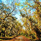 A Road To Freedom by Dana Yoachum