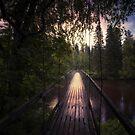 Bridge by Mika Suutari