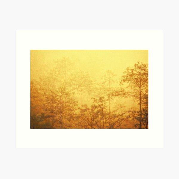 Trees in the mist Art Print