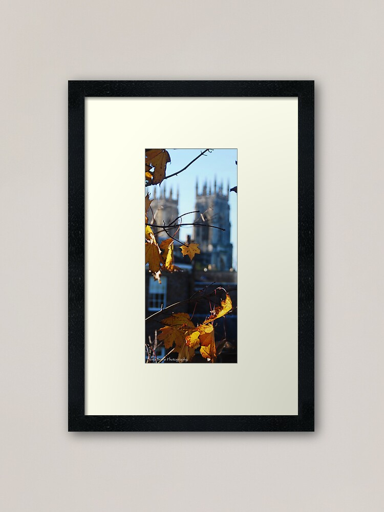 Alternate view of Autumn Leaves In York Framed Art Print