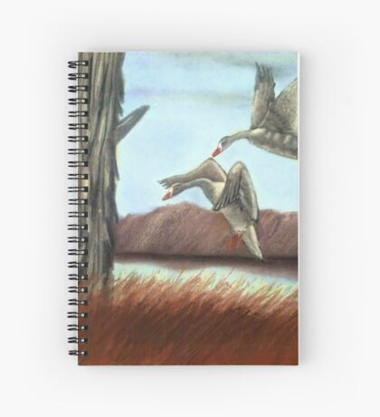 RESTING PLACE, Pastel Painting, for prints and products Spiral Notebook