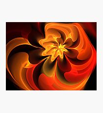 Orange Ruby Nautilus Photographic Print