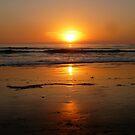 """Tawny Sunset"" by Tim&Paria Sauls"