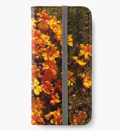 Hibbertia stellaris iPhone Wallet