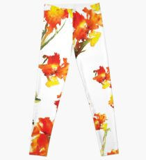 Floral Celebration Leggings