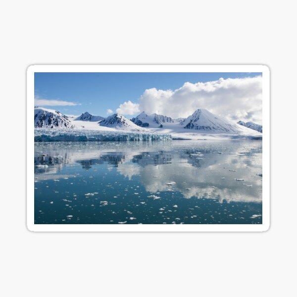 Arctic Beauty Sticker