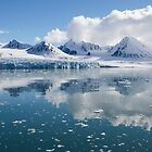 Arctic Beauty by Marylou Badeaux