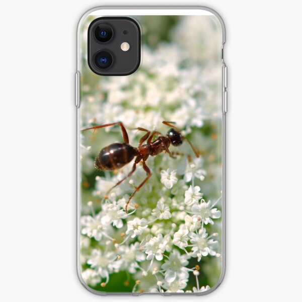 Queen Anne's Ant iPhone Soft Case
