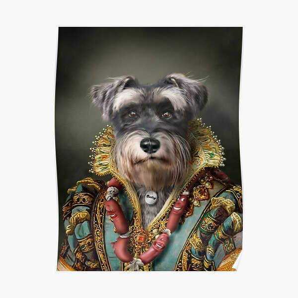 Schnauzer Portrait - Bailey Poster